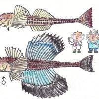 ダボ鯊の戯言