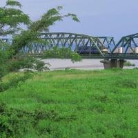 EF65 2065 3071レ天竜川橋梁 (2019年7月 オマケは新幹線)