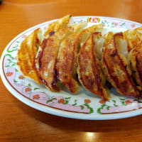 餃子の王将 黒瀬店  餃子とジャストサイズの回鍋肉  富山県富山市二口町1丁目8−11
