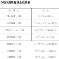 【平取町軽種馬振興会・1歳馬品評会(2018年生産馬)】が開催!