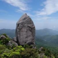 ヤクシマシャクナゲを堪能してきました!屋久島の名峰「太忠岳トレッキング」