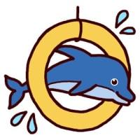 イルカ・ラッコ・クジラ (海の動物/ミニカット)