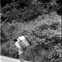 懐かしい風景.竹籠を背負う女性