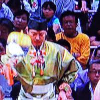 5/22 お雛様の軍配 リバーシブルか?