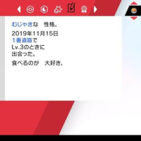 ポケモンソード日記 その8 チャンピオン編