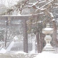 """突然の大雪に霞む""""函館八幡宮""""..."""