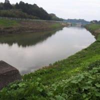 千葉県管轄の河川を区に委託することの危険性が現実化