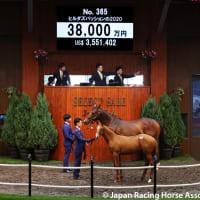 【セレクトセール2021(Select Sale、1歳&当歳)】の「上場馬名簿」が発行
