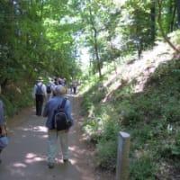 5月17日(土) ハイキング 旧国分寺跡とお鷹の道