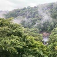 山薬で雄大な箱根の景色を見ながら、美味しい自然薯料理でリフレッシュ♪