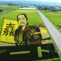 21世紀の新しい農業を創る会夏期研修会   青森