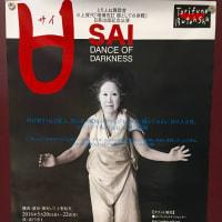 とりふね舞踏舎公演「SAI」を観戦