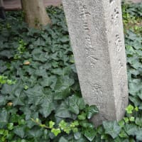 まち歩き中1378 京の通り・富小路通 NO41   道標 手島堵庵五楽舎  朝倉町