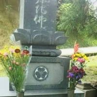母の日・・・墓前にカーネーションを供えました。