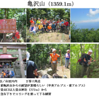 亀沢山(1359.1m)(2021.7.25)