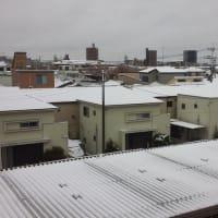 昨日の雪とコロナ感染症