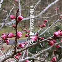 3月の俳句まとめ