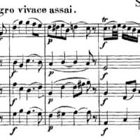 モーツァルト 弦楽四重奏曲 14番 ト長調 K. 387