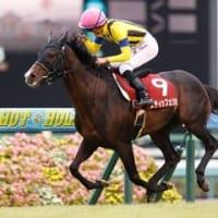 神戸新聞杯はサートゥルナーリアが貫禄勝ち!オールカマーは2強共倒れ。