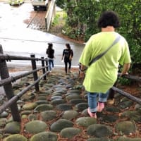 御蔵島ガイド講習続き