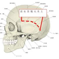 マスクと側頭骨や下顎の歪みの関係