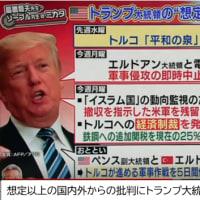 クルド問題でトルコを非難する声も日本のメディアでは多いが、本当の所どうなのさ