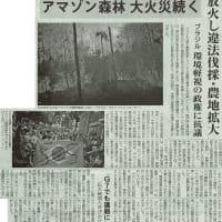 #akahata アマゾン森林大火災続く 放火し違法伐採・農地拡大/ブラジル 環境軽視の政権に抗議・・・今日の赤旗記事