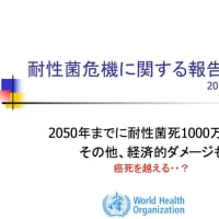 耐性菌死1000万人/年 癌死を越える?