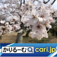 2020年3月分 鈴木社長の日誌・日記・備忘 cari.jp