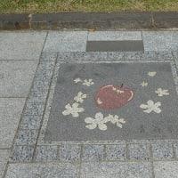皇居歩道を散歩・・・見つけた県名表示の花ブロック