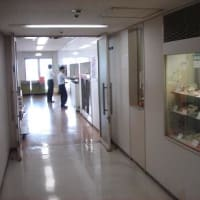 神戸第2地方合同庁舎内食堂