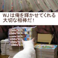 WJは大切な相棒・・・
