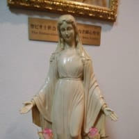 聖ピオ十世会の東京のミサの後では聖体降福式を行いました