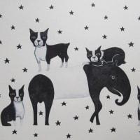 黒い星星星