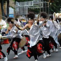 YOSAKOI ソーラン祭り-18