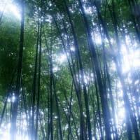 人生の不思議   「物語」10