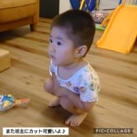 ゴーヤ初収穫♪ リオンの髪型はママのひらめき(^-^;)
