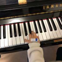 左手も、そして、両手でも弾いてみよう!