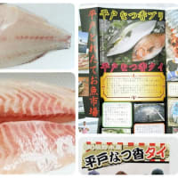 フルーツ魚◇◆夏香タイ◆◇長崎県平戸市