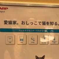 猫ちゃんをハイテクトイレで健康管理