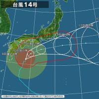 台風14号 ⑥