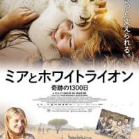 【dairy】『ミアとホワイトライオン 奇跡の1300日』オンライン試写(感想は後日)
