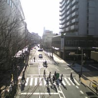 「横断歩道」