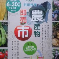 世田谷産農産物即売市【三軒茶屋ふれあい広場】