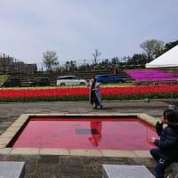 初めての場所訪問と紫雲寺記念公園春まつりと