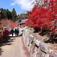呑山観音寺の紅葉-篠栗町