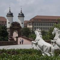 ファーウェイの壮大なヨーロッパ風R&Dキャンパス(写真集)