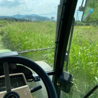 筑波山ビュースポットの除草作業。