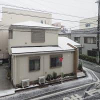 びっくりな雪