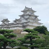 【観戦】AWAYノエビアスタジアム初参戦記&姫路城